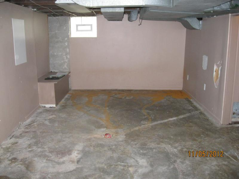 Basement before wall removal. Walls damaged by water.